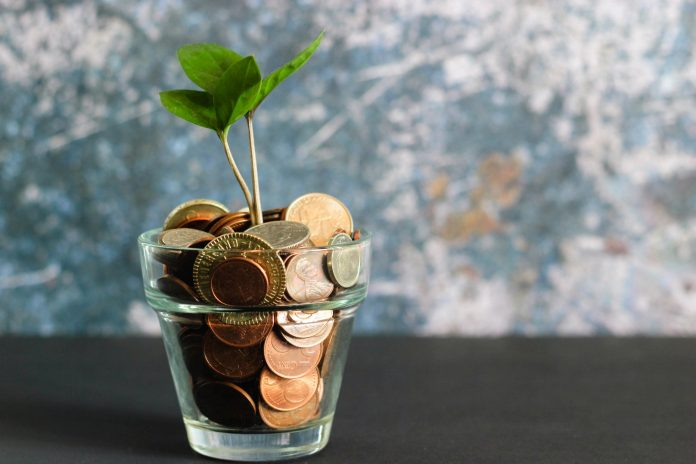 coins in a jar with a plant