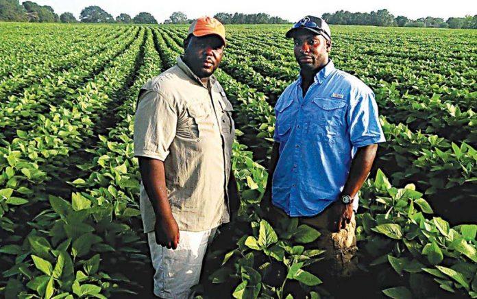 Celebrating Black Farming